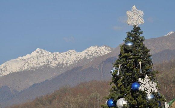 Новогодний отдых в Сочи станет